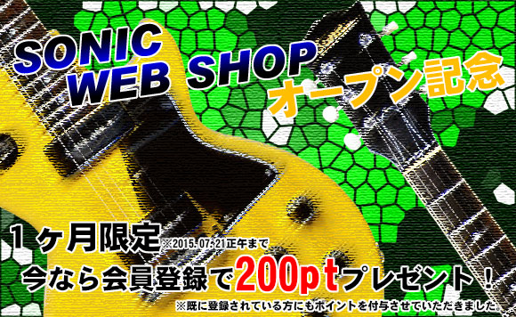 WEB SHOP 200pt